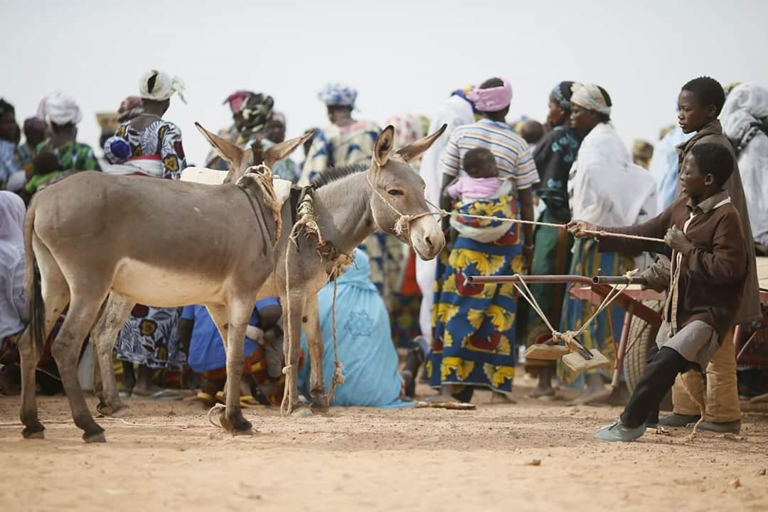 Ansongo : déplacement massif des populations du fait de l'insécurité.